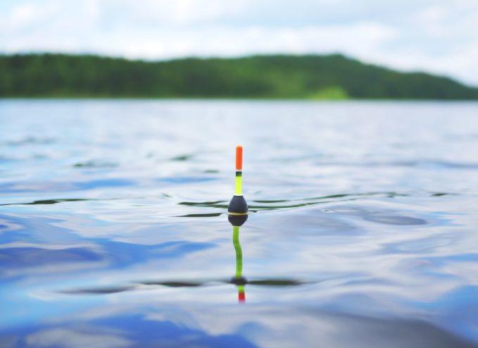 Schwimmerangeln auf Forellen