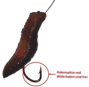 wurmstueck-am-haken