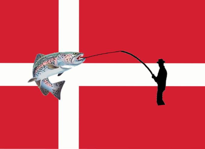 Forellenangeln in Dänemark